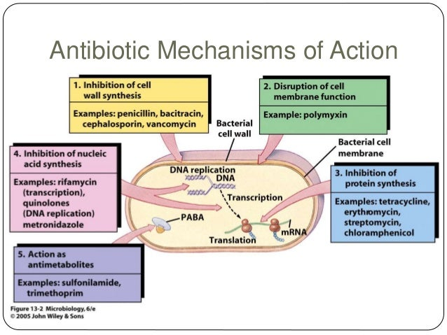 Resultado de imagen para antibiotics mechanisms of action