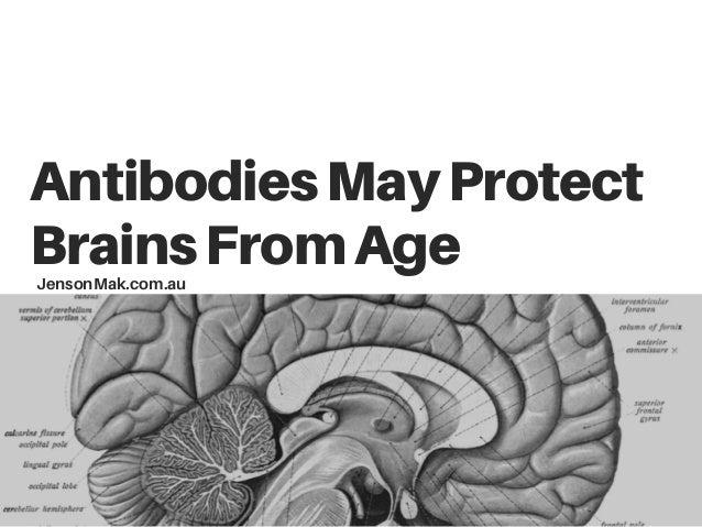 AntibodiesMayProtect BrainsFromAgeJensonMak.com.au