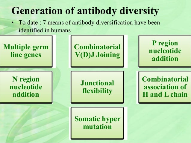 generation of antibody diversity Our authors and editors we are a community of more than 103,000 authors and editors from 3,291 institutions spanning 160 countries, including nobel prize winners and some of the world's most-cited researchers.