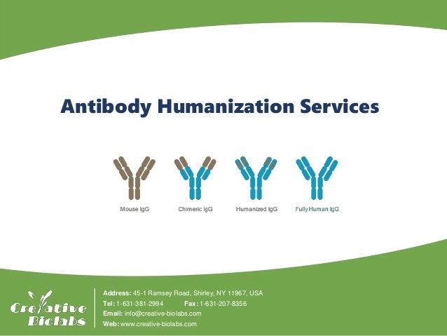 「antibody creative biolabs」的圖片搜尋結果