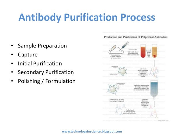 Protein Production And Purification Nature Methods