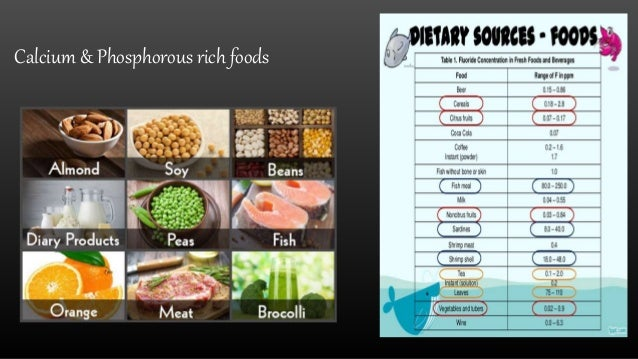 what is a cariogenic diet