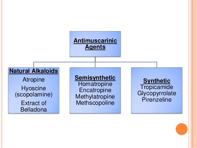 Antimuscarinic Agents Natural Alkaloids Atropine Hyoscine (scopolamine) Extract of Belladona Semisynthetic Homatropine Enc...