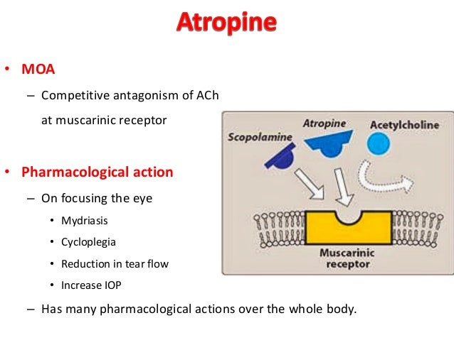 anticholinergics drugs for optometry, Skeleton