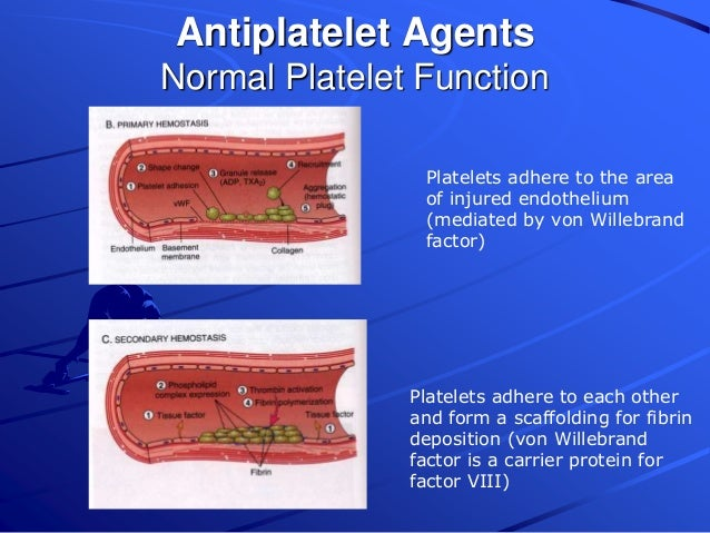 Anticoagulant, antiplatelet, and thrombolytic drugs