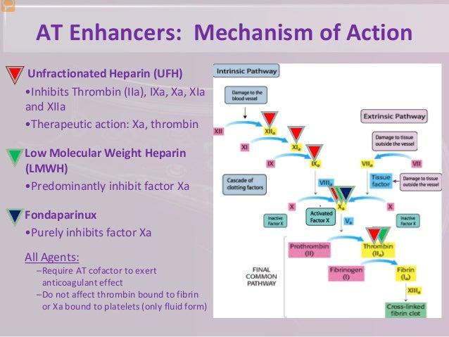 ... 9. AT Enhancers: Mechanism of Action Unfractionated Heparin ...