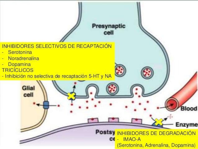 Antidepresivos 26 02-16