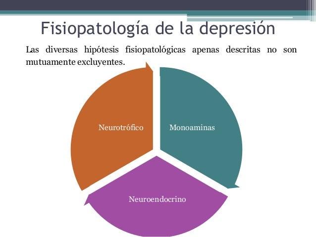 Fisiopatología de la depresión Las diversas hipótesis fisiopatológicas apenas descritas no son mutuamente excluyentes. Mon...