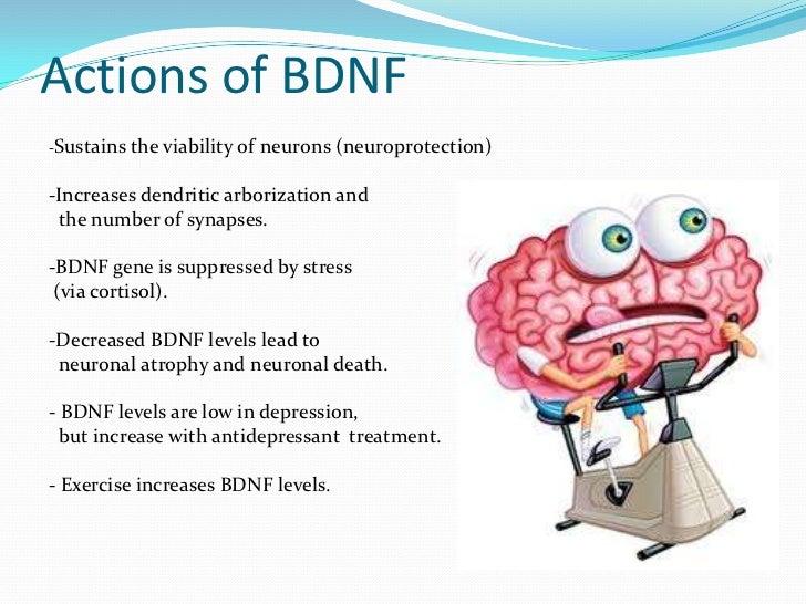 Suicide dopamine brain derived neurotrophic factor