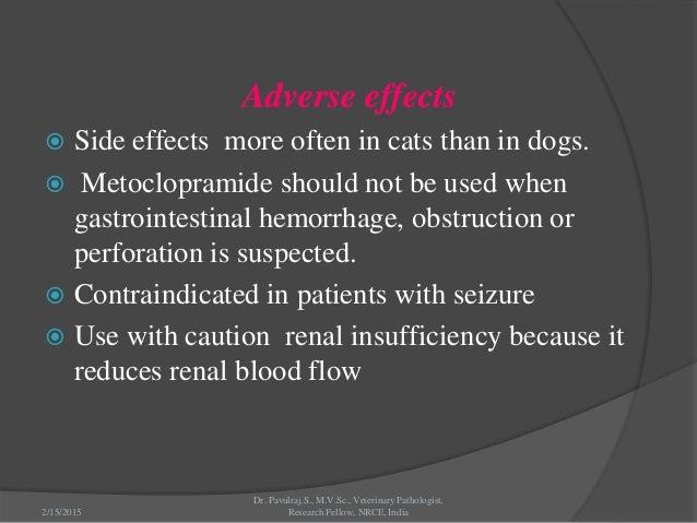 Reglan Side Effects In Dogs