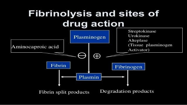 Anti Fibrinolytics