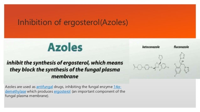 Antifungal Drug