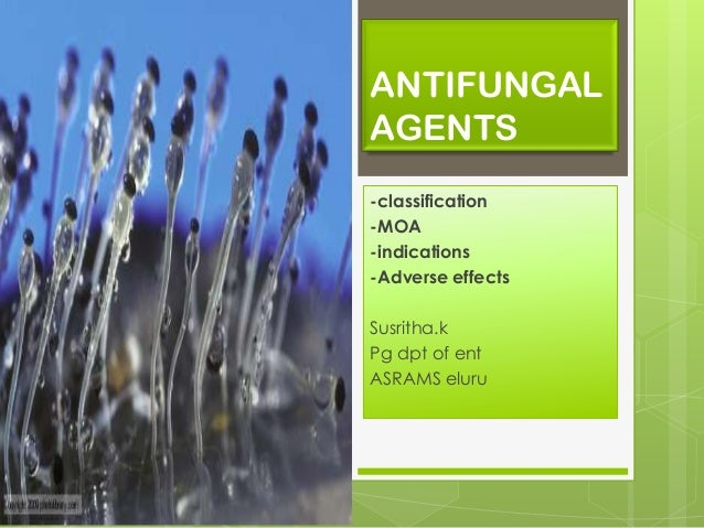 ANTIFUNGAL AGENTS -classification -MOA -indications -Adverse effects Susritha.k Pg dpt of ent ASRAMS eluru