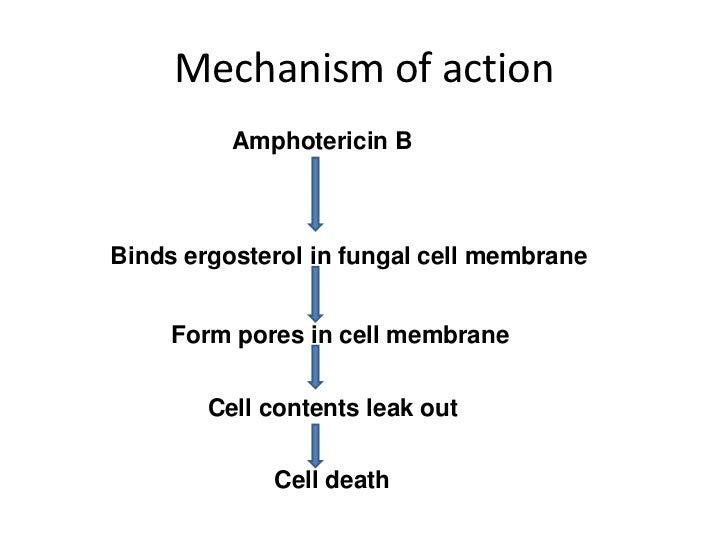 undecylenic acid 10