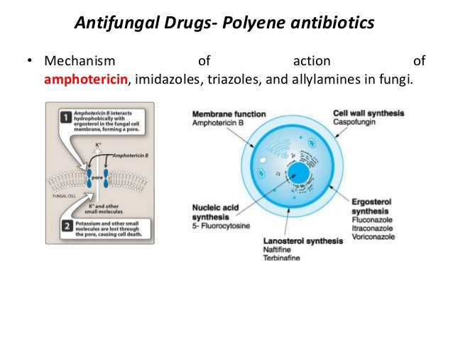 antifungal agents Systemic antifungal agents jennifer curello, pharmd, bcps infectious diseases fellow's boot camp ucla health system july 3, 2014 1.
