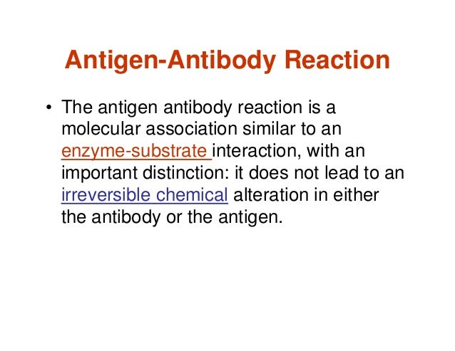 antigen antibody interaction Interactions between antigen and antibody interaction between antigen and antibody is a bimolecular association and it does not lead to an irreversible chemical alteration in either the.