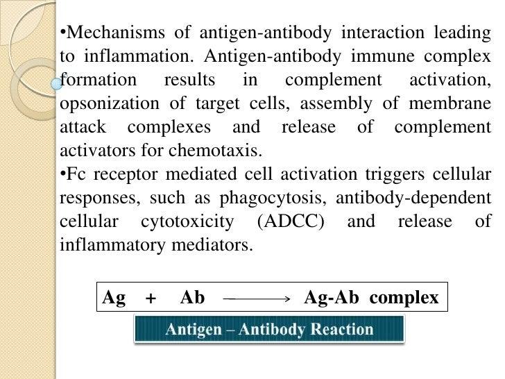Binding Site of Antigen – Antibody Reaction:• In antigen - antibody reaction, the antibody attacheswith the antigen.• The ...