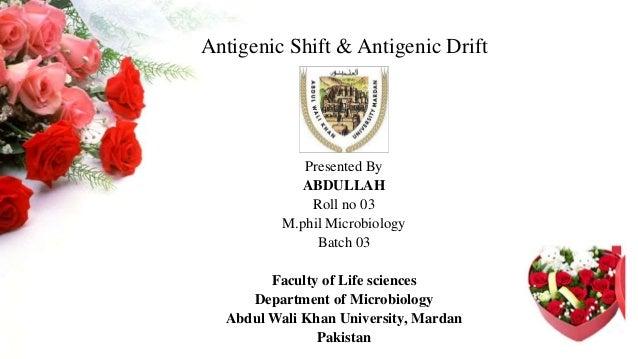 antigenic shift and drift