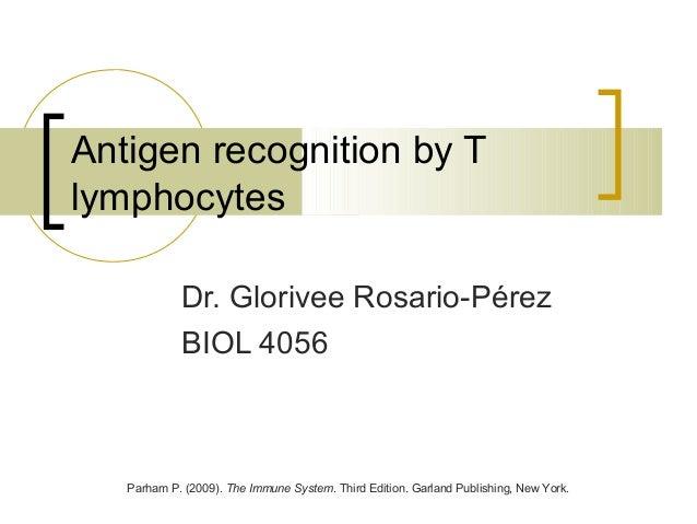 Antigen recognition by Tlymphocytes            Dr. Glorivee Rosario-Pérez            BIOL 4056   Parham P. (2009). The Imm...