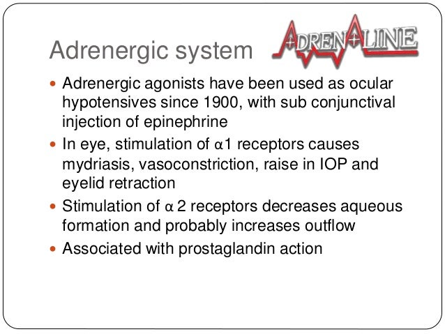 Adrenergic system  Adrenergic agonists have been used as ocular hypotensives since 1900, with sub conjunctival injection ...