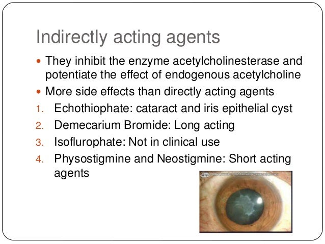 Indirectly acting agents  They inhibit the enzyme acetylcholinesterase and potentiate the effect of endogenous acetylchol...