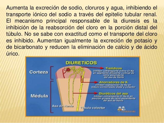 ver con la cerveza produce colesterol acido urico que remedio casero se puede tomar para la gota alimentos para eliminar acido urico
