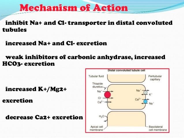 •Idradipine (DynaCirc®)•Nicardipine (Cardene®)•Nisoldipine (Sular®)•Felodipine (Plendil®)•Amlodipine (Norvasc®)Calcium cha...