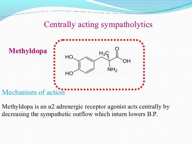 PROPANOLOL ATENOLOLLABETOLOLβ-adrenergic Blockers