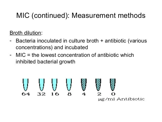 determining the minimum inhibitory concentration biology essay Determination of the minimum inhibitory concentration (mic)  albumin (test  without bio-burden), and transferred in 9 ml of the test solution.