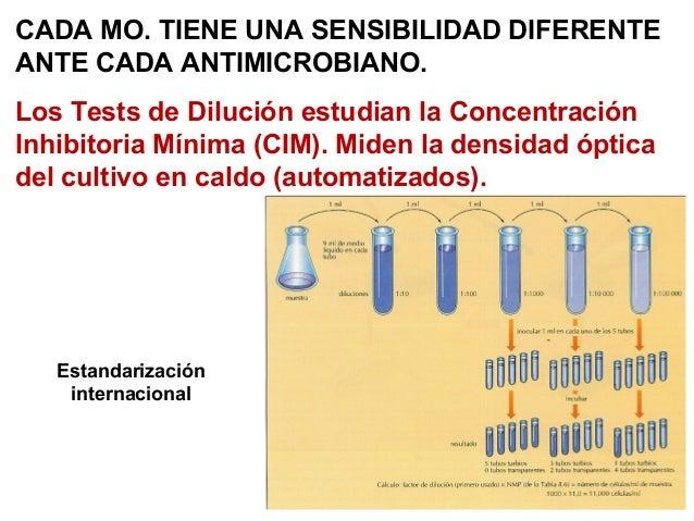 Concentracion Minima Inhibitoria Pdf Download