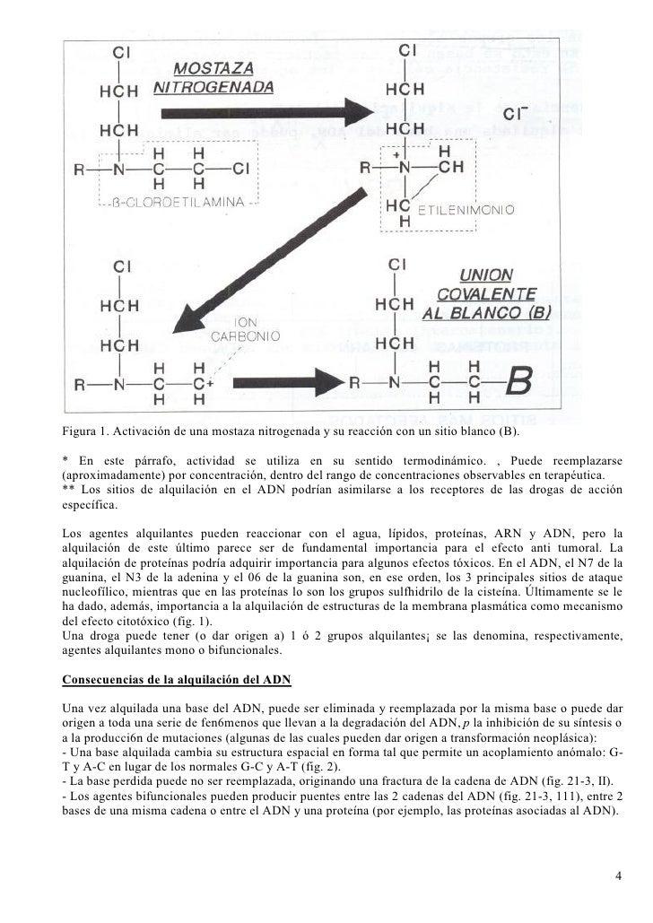 Figura 1. Activación de una mostaza nitrogenada y su reacción con un sitio blanco (B).  * En este párrafo, actividad se ut...