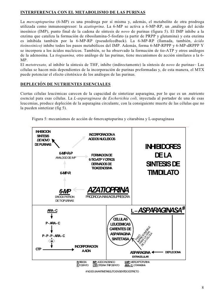 INTERFERENCIA CON EL METABOLISMO DE LAS PURINAS  La mercaptopurina (6-MP) es una prodroga por sí misma y, además, el metab...