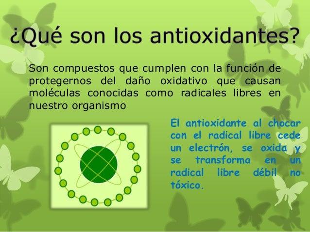 Alimentos antioxidantes - Que alimentos son antioxidantes naturales ...