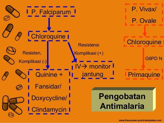 Stromectol ordonnance ou pas