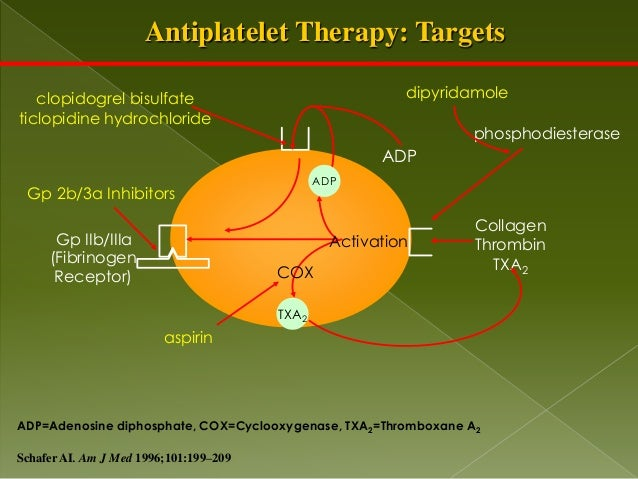 antiplatelet therapy Long-term antiplatelet monotherapy after stenting is safe but does not reduce the risk of death or heart attack compared to standard dual antiplatelet therapy, according to late breaking results.