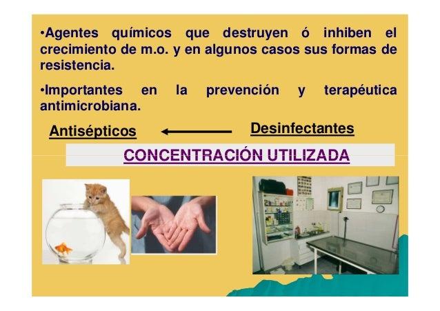 Antisépticos Y Desinfectantes En Medicina Veterinaria Modo De Compat