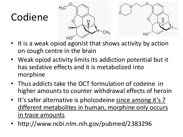 effects of codiene on the human Codeine is an opiate medication that has a high risk for dependence and addiction learn the signs of dependence and how to get help.