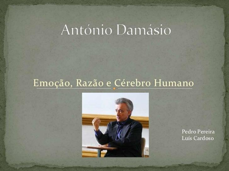 António Damásio<br />Emoção, Razão e Cérebro Humano<br />Pedro Pereira<br />Luís Cardoso<br />