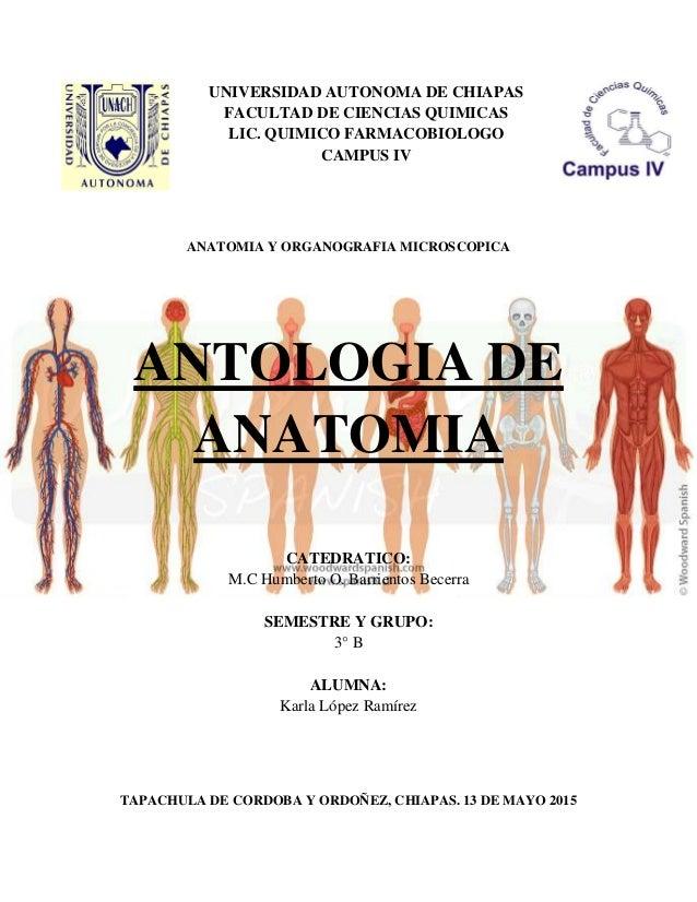 antologia-de-anatomia-1-638.jpg?cb=1431834486