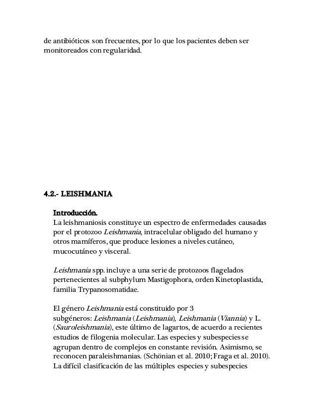Fantástico Monitorear La Anatomía Lagarto Imágenes - Anatomía de Las ...