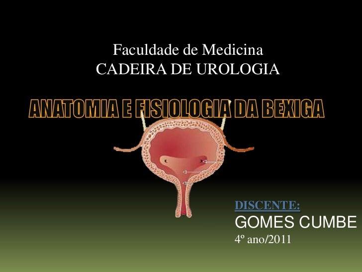 Faculdade de MedicinaCADEIRA DE UROLOGIA                 DISCENTE:                 GOMES CUMBE                 4º ano/2011