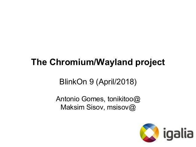 The Chromium/Wayland Project (BlinkOn 9)