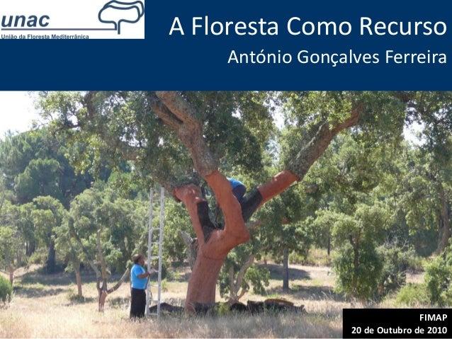 FIMAP 20 de Outubro de 2010 A Floresta Como Recurso António Gonçalves Ferreira