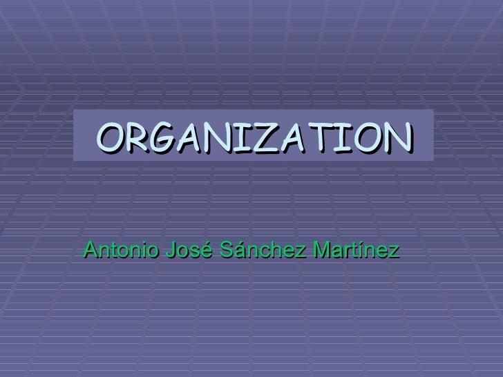 ORGANIZATION Antonio José Sánchez Martínez