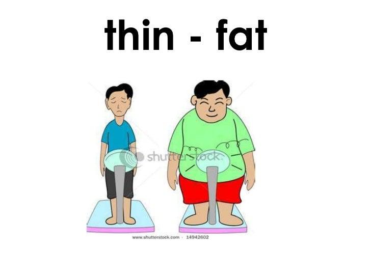 Thin antonym