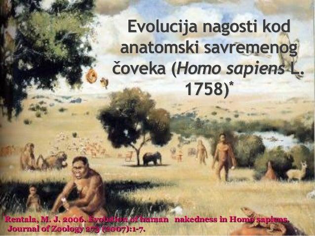 * Rentala, M. J. 2006. Evolution of human nakedness in Homo sapiens.  Journal of Zoology 273 (2007):1-7.