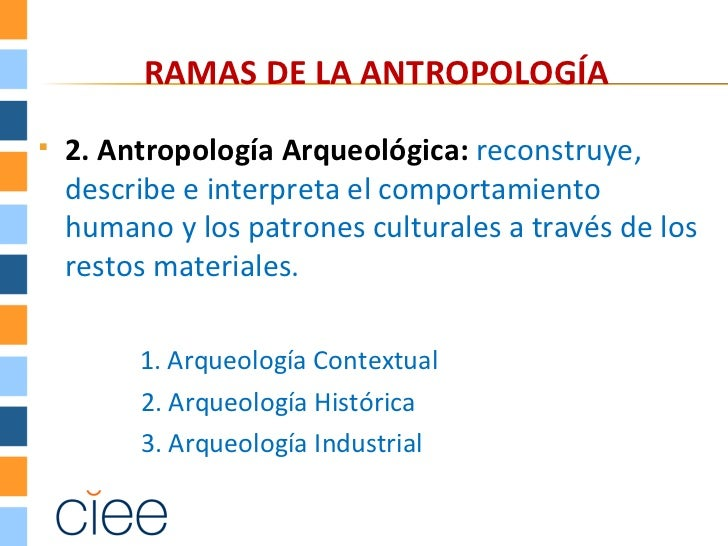 RAMAS DE LA ANTROPOLOGÍA   2. Antropología Arqueológica: reconstruye,    describe e interpreta el comportamiento    human...
