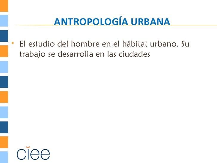 ANTROPOLOGÍA URBANA   El estudio del hombre en el hábitat urbano. Su    trabajo se desarrolla en las ciudades