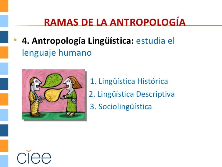 RAMAS DE LA ANTROPOLOGÍA   4. Antropología Lingüística: estudia el    lenguaje humano                     1. Lingüística ...