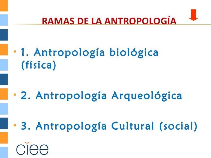 RAMAS DE LA ANTROPOLOGÍA   1. Antropología biológica    (física)   2. Antropología Arqueológica   3. Antropología Cultu...